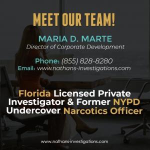 Florida Private Investigators