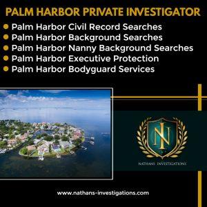 Palm Harbor Private Investigator